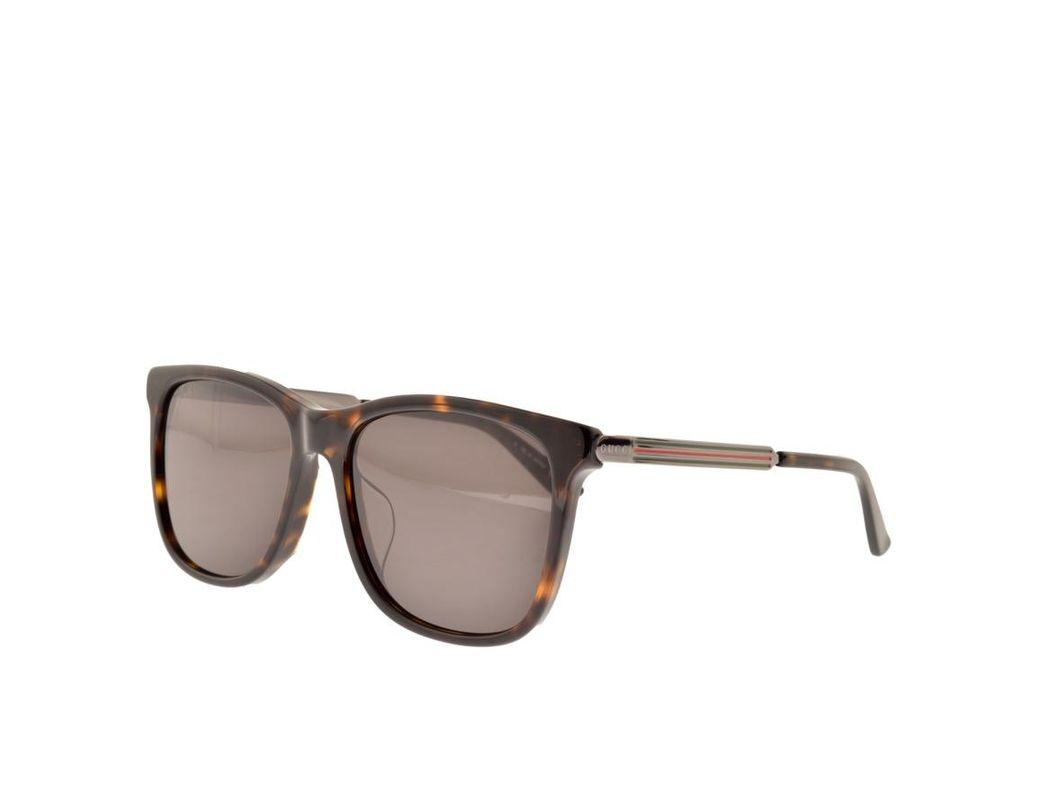 b10cb23b2b9 Lyst - Gucci Gucci GG0078SK Sunglasses Brown in Brown for Men