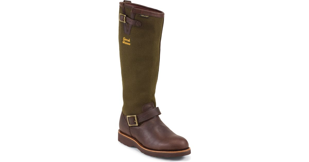 Excellent Chippewa 25115  18 Inch Square Toe Snake Boot In Brown  Lyst