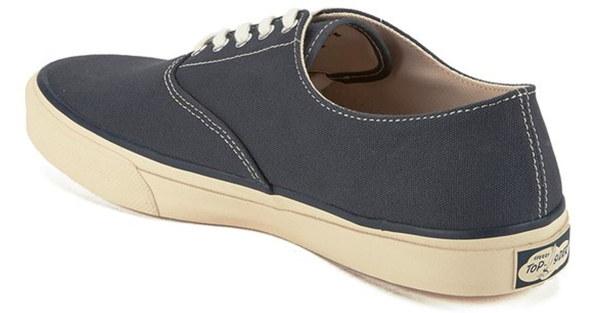 Cloud CVO Sperry gNKiavI