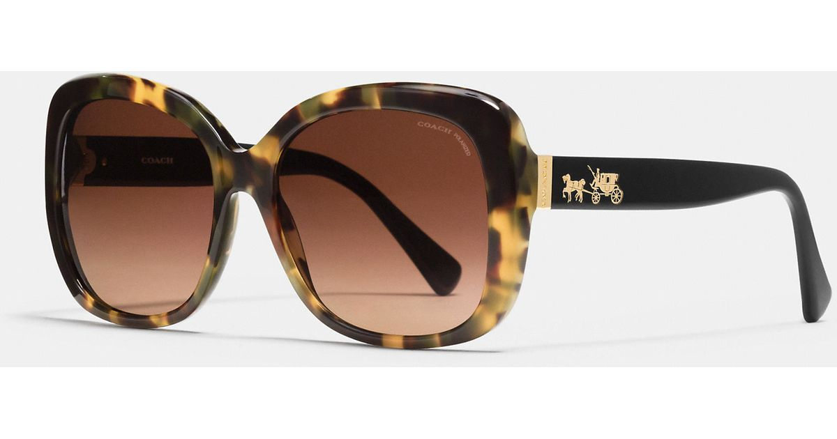 0a320a66ad COACH Horse And Carriage Square Sunglasses in Brown - Lyst