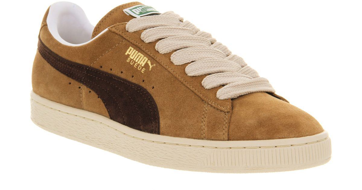 fadb1b786b5dd5 Lyst - PUMA Suede Classic Ermine Black Coffee in Brown for Men