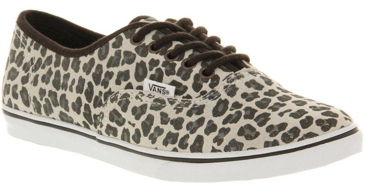 Vans Multicolor Authentic Lo Pro Leopard Suede Grey