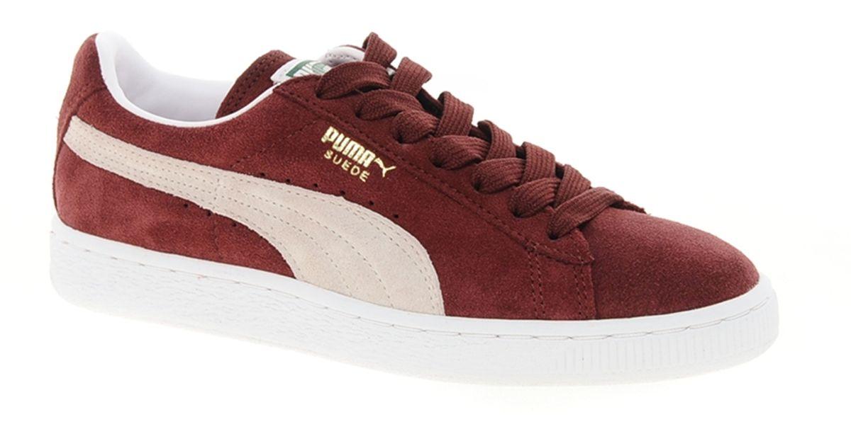 PUMA Suede Classic Burgundy Sneakers In Red
