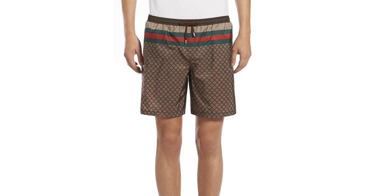 086a148a8252 Gucci Web Detail Diamante Swim Shorts in Brown for Men - Lyst