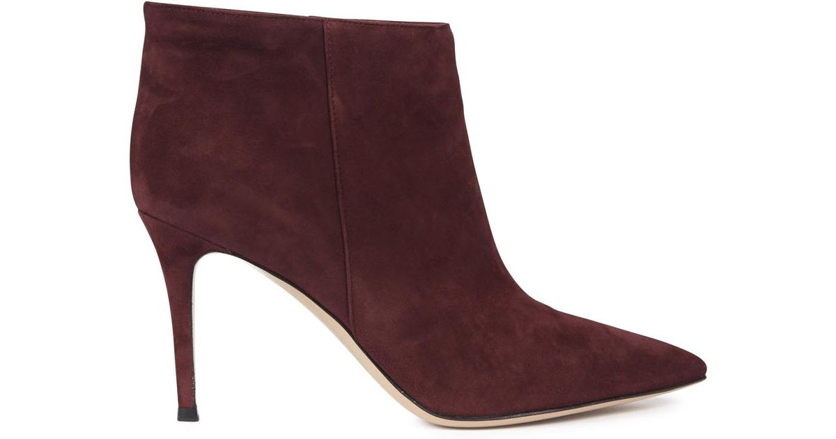 gianvito burgundy suede ankle boots in lyst