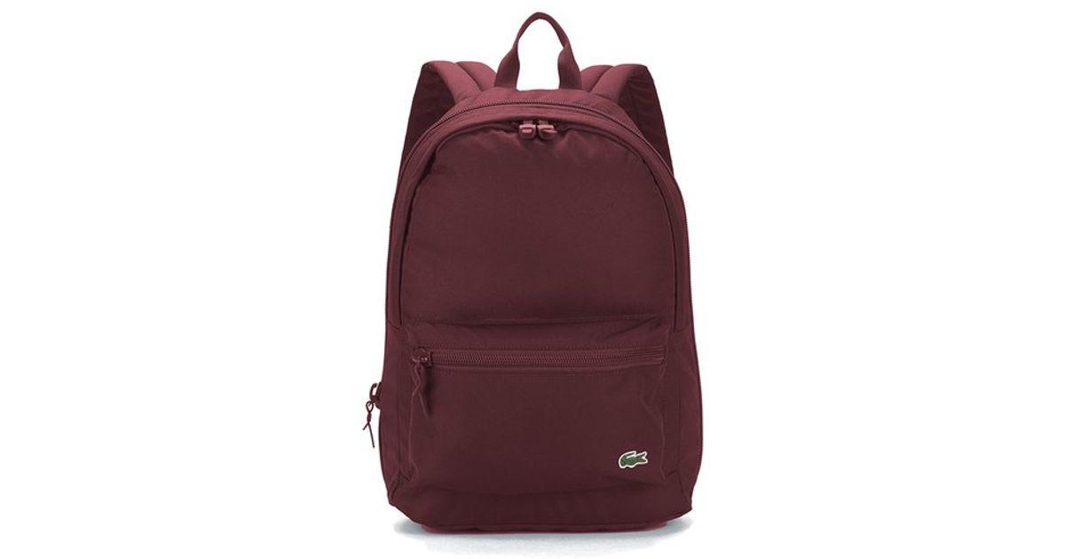 808d6ca56fe Lacoste Men's Backpack in Purple for Men - Lyst