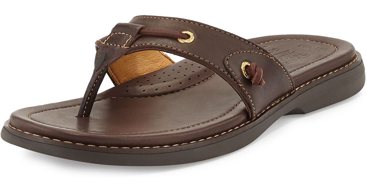 a410bb34c Lyst - Sperry Top-Sider Gold Cup Thong Sandal in Brown