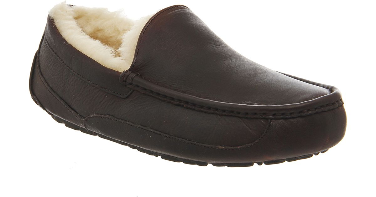 2632e915ff1 Ugg Mens Slippers Ascot Sale - cheap watches mgc-gas.com