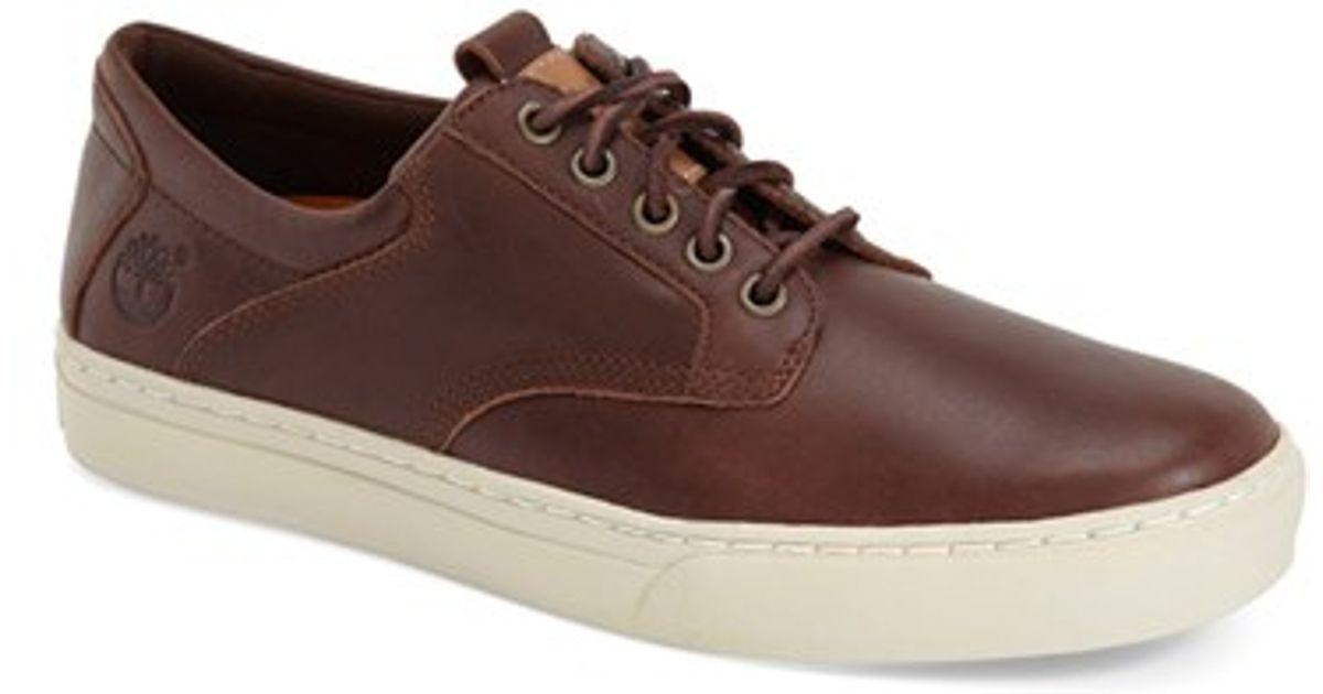 sneaker timberland