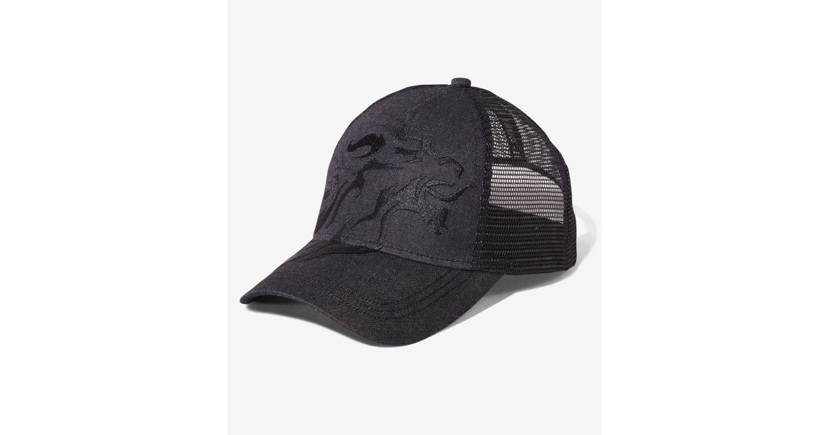 Lyst - Express Extra Large Lion Chambray Trucker Hat in Black for Men 0689fa08291e