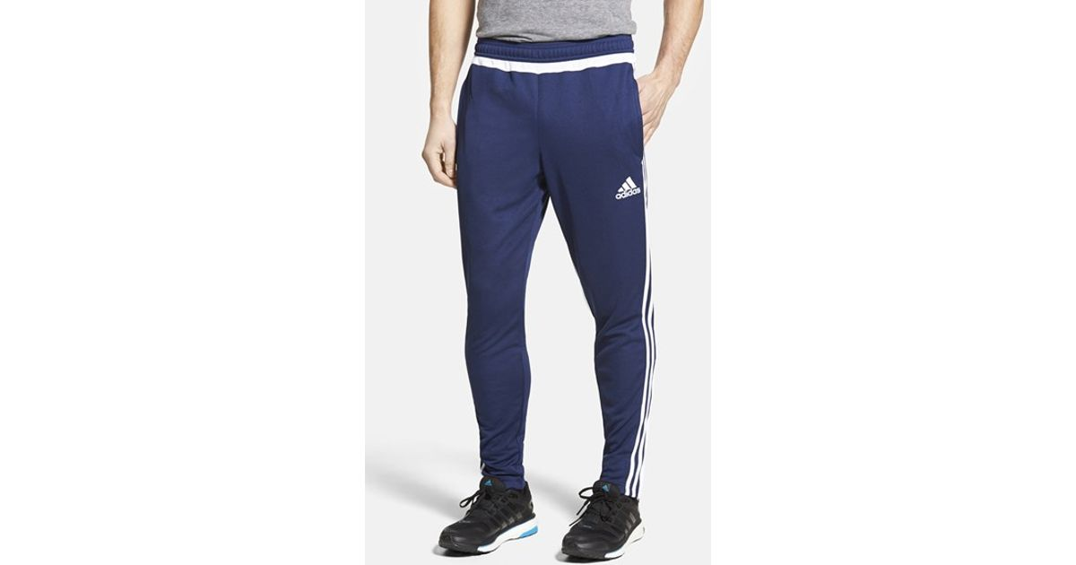 Adidas Originals Blue 'tiro 15' Slim Fit Climacool Training Pants for men