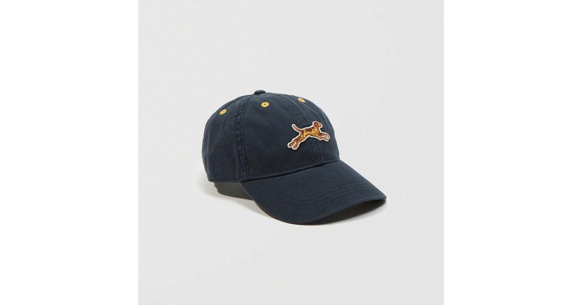 Lyst - Abercrombie   Fitch Golden Dog Hat in Blue for Men 2756e74eba6