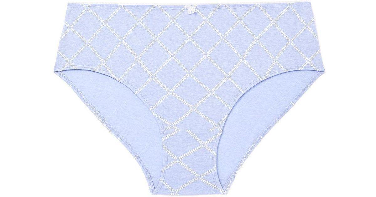 04ca9e76c064 Lyst - Addition Elle Printed Cotton Hipster Panty - Ti Voglio in Blue