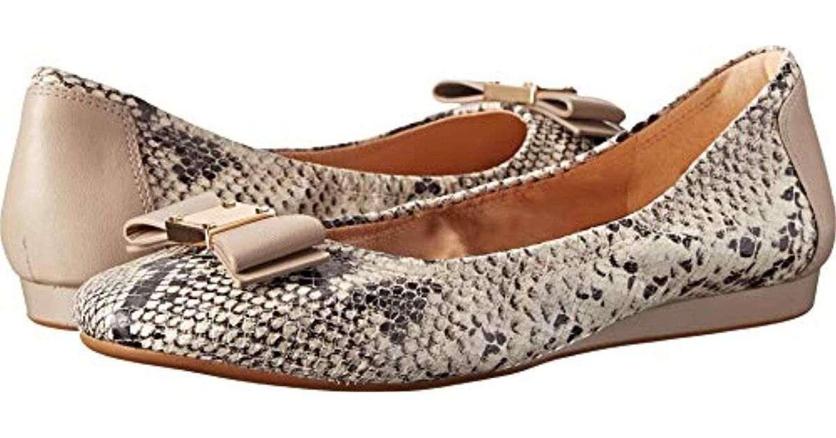 b545ad6eb Lyst - Cole Haan Tali Bow Ballet, Natural Roccia Snake Print 6 2a Us in  Natural