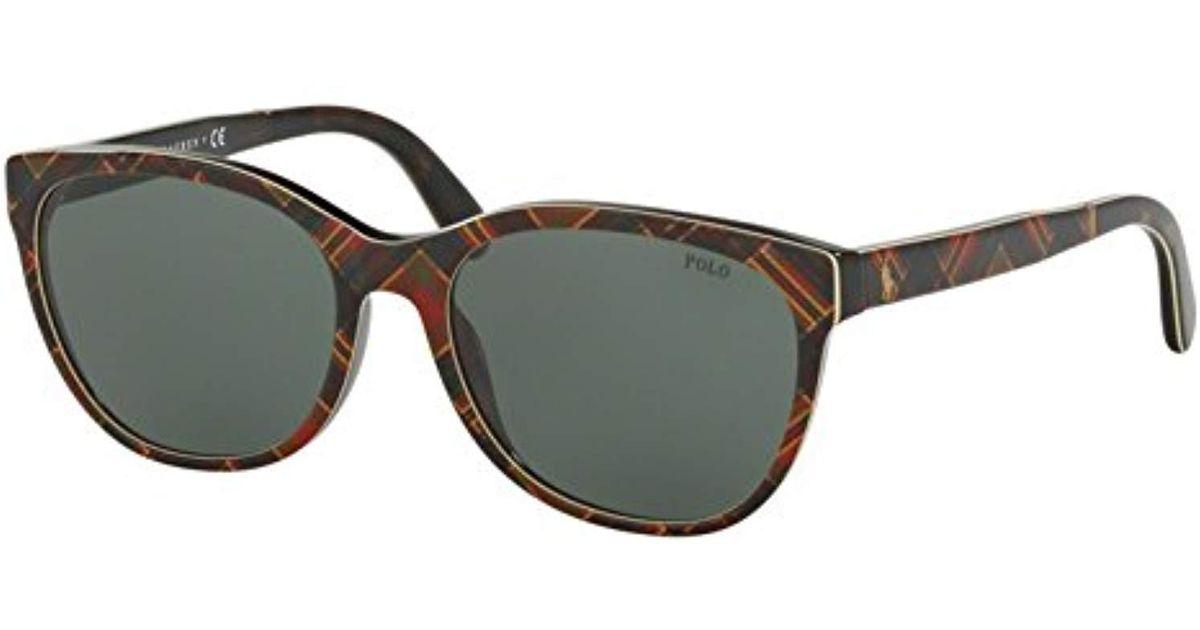 35c0d19e6243 Lyst - Polo Ralph Lauren Acetate Woman Wayfarer Sunglasses - Save 2%
