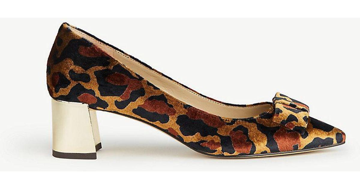 4906f5794505 Ann Taylor Jolene Leopard Print Velvet Bow Pumps in Brown - Lyst