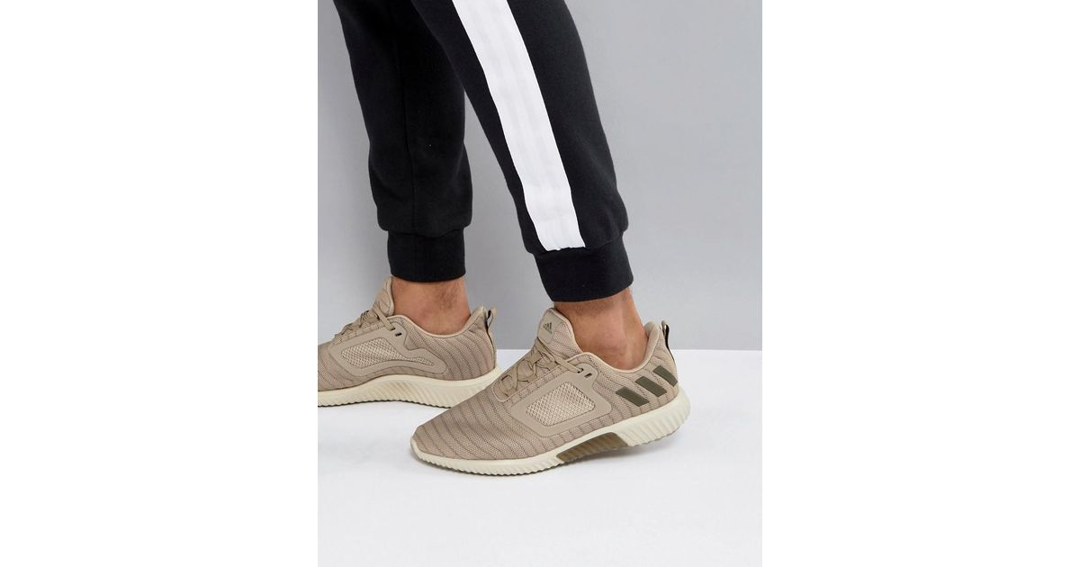 reputable site d70bf b71b7 adidas Running Climacool Trainers In Stone S80706 for Men -