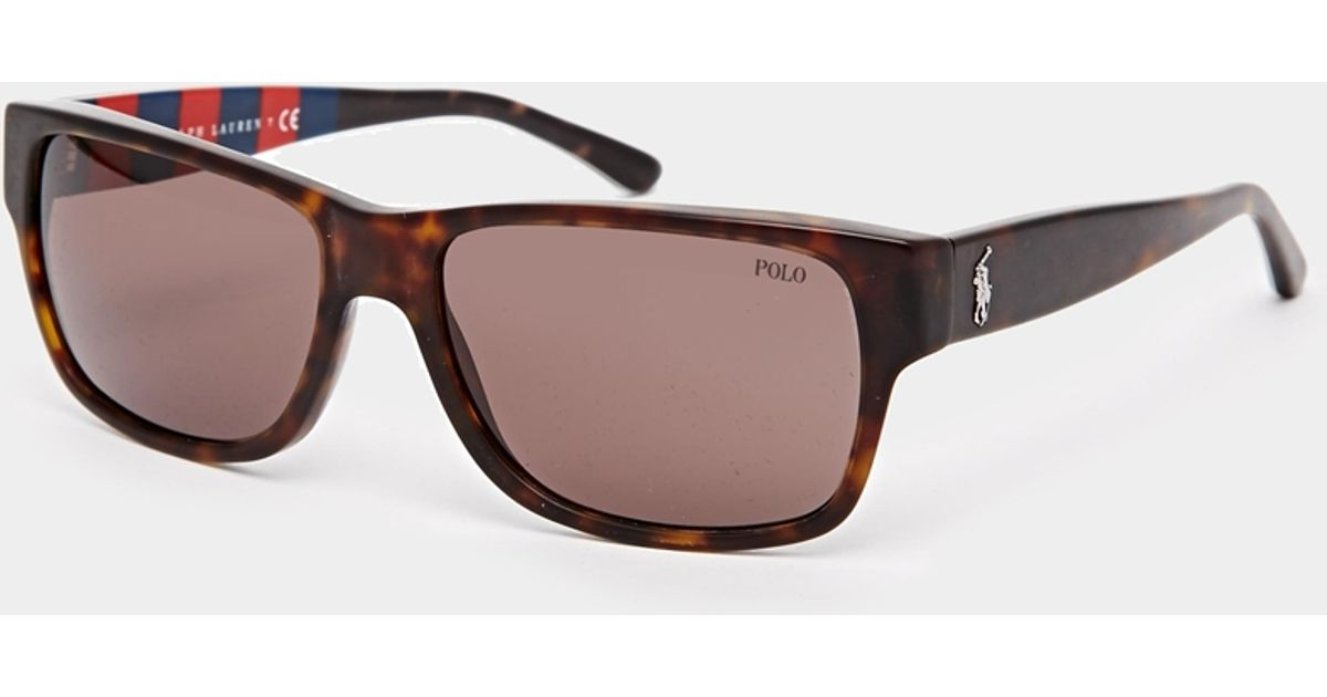 c2771c736 ... discount lyst polo ralph lauren wayfarer sunglasses in brown for men  d65dc a1065 ...