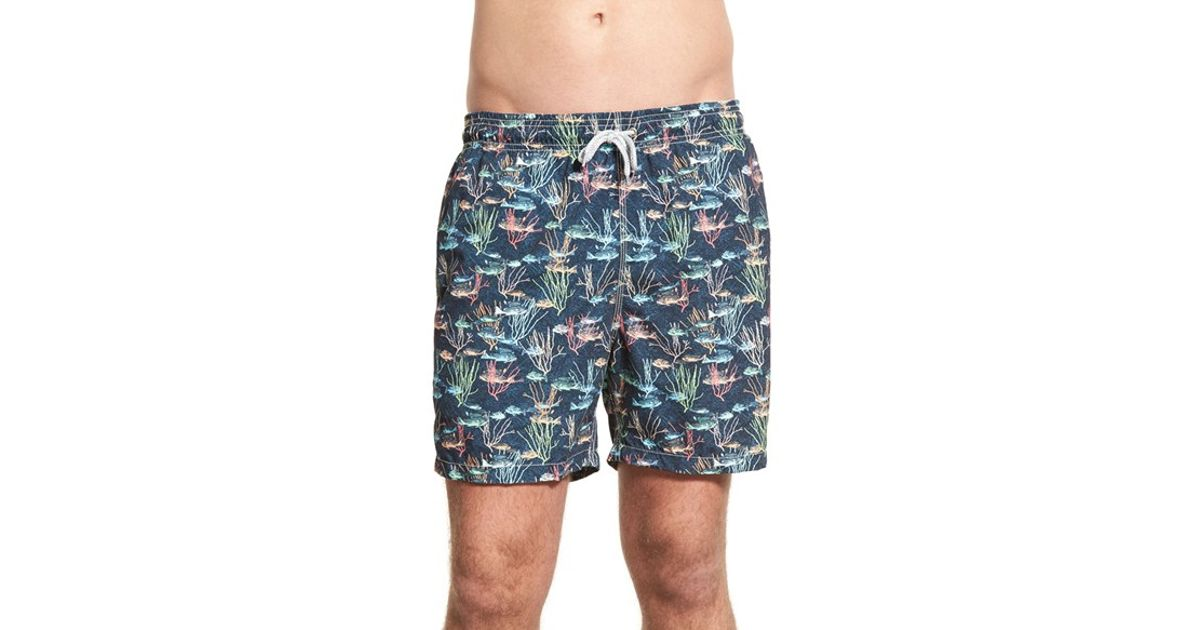 Michael 39 s swimwear 39 school of fish 39 print swim trunks in for Fishing swim trunks