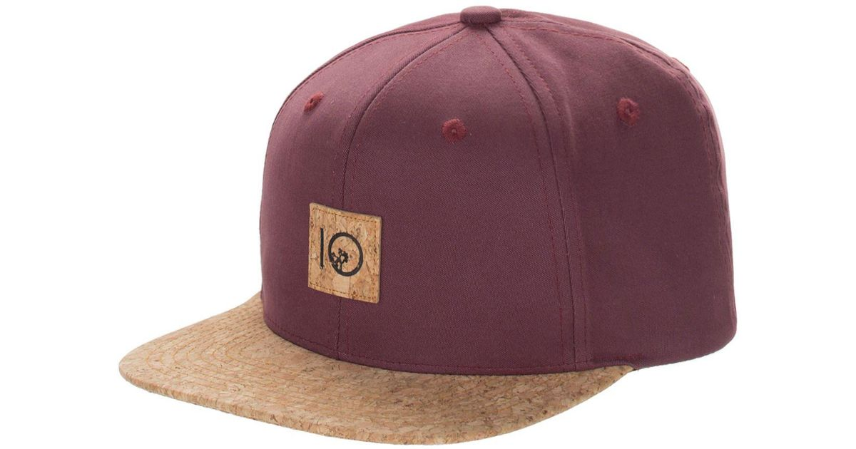 the best attitude 0906c 65b73 ... clearance where can i buy lyst tentree freeman snapback hat in purple  for men 8bff9 d5f6d