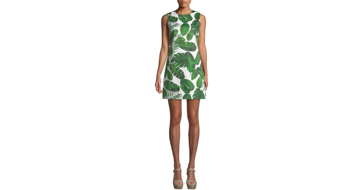 33471719692 Alice + Olivia Coley Sleeveless Palm-leaf Print A-line Dress in Green - Lyst