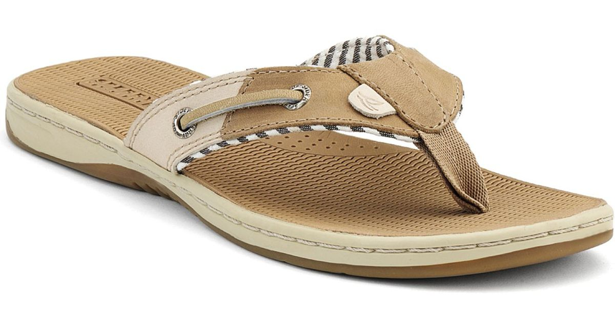 3b7bc1d94 Lyst sperry top sider sperry womens seafish thong sandals in natural jpeg  1200x630 Sperry leather flip