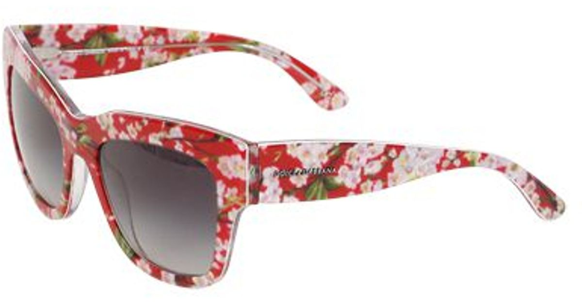Dolce And Gabbana Red Sunglasses  dolce gabbana flower printed squared sunglasses in red lyst