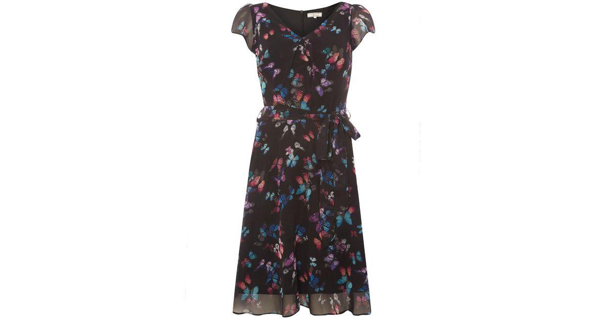 6d4ac6097685d Dorothy Perkins Billie & Blossom Tall Black Butterfly Print Skater Dress in  Black - Lyst