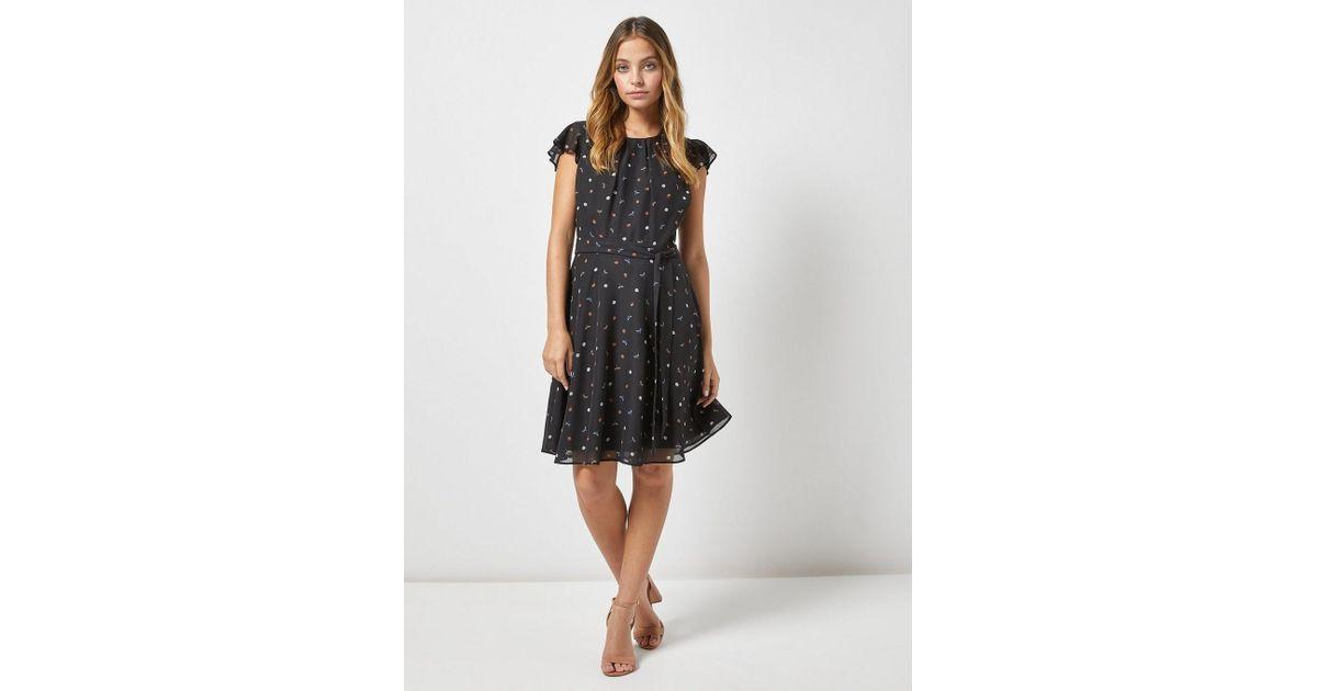 Dorothy Perkins Billie   Blossom Petite Black Dragonfly Print Skater Dress  in Black - Lyst ad35cbeae