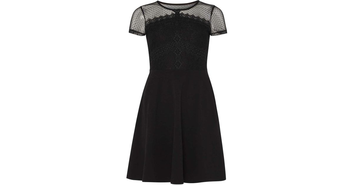 c2273bf311d Lyst - Dorothy Perkins Petite Black Lace Jersey Skater Dress in Black