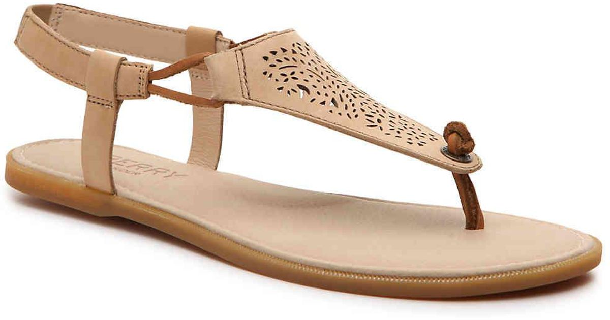 29bb34ff2b37 Lyst - Sperry Top-Sider Calla Jane Flat Sandal in Brown