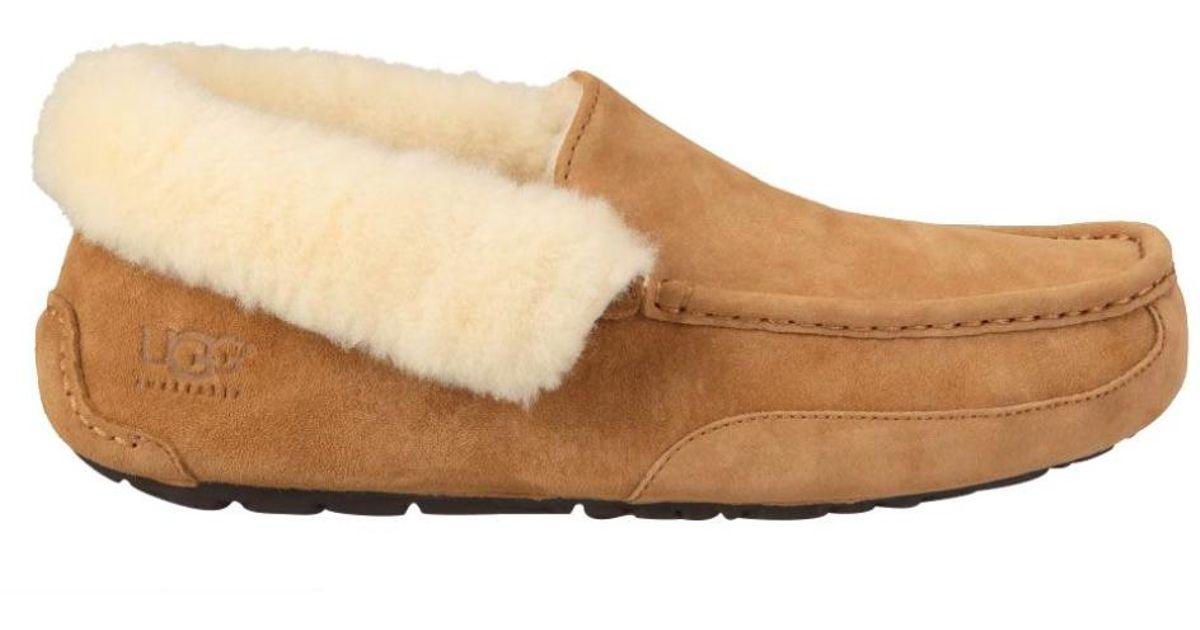 82f151dac52 Ugg Multicolor Men Grantt Slippers, Chestnut for men
