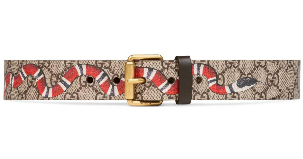 3f4e5b8051a Lyst - Gucci Gg Supreme Belt With Kingsnake Print in Brown for Men
