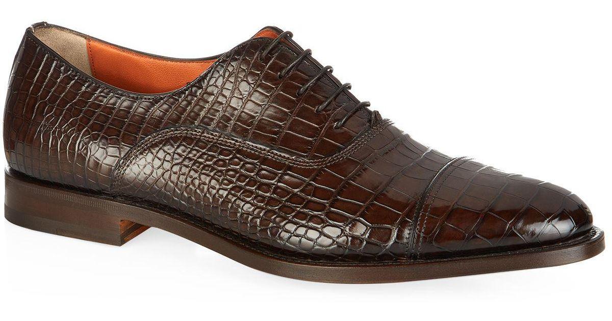 crocodile oxford shoes - Brown Santoni lQ8zj