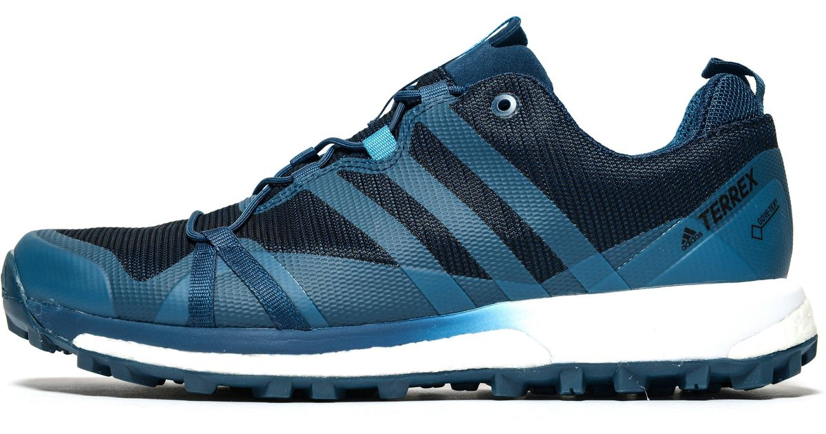 90c56b5fe4a Lyst - adidas Terrex Agravic Gtx Trail Running Shoes in Blue for Men