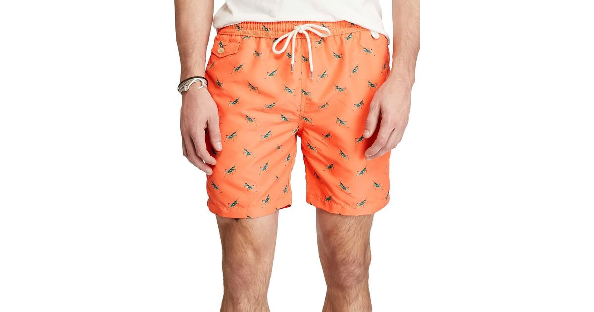 533084336c Lyst - Polo Ralph Lauren Printed Critter Swim Trunks Xx-large 2xl Orange  5.75