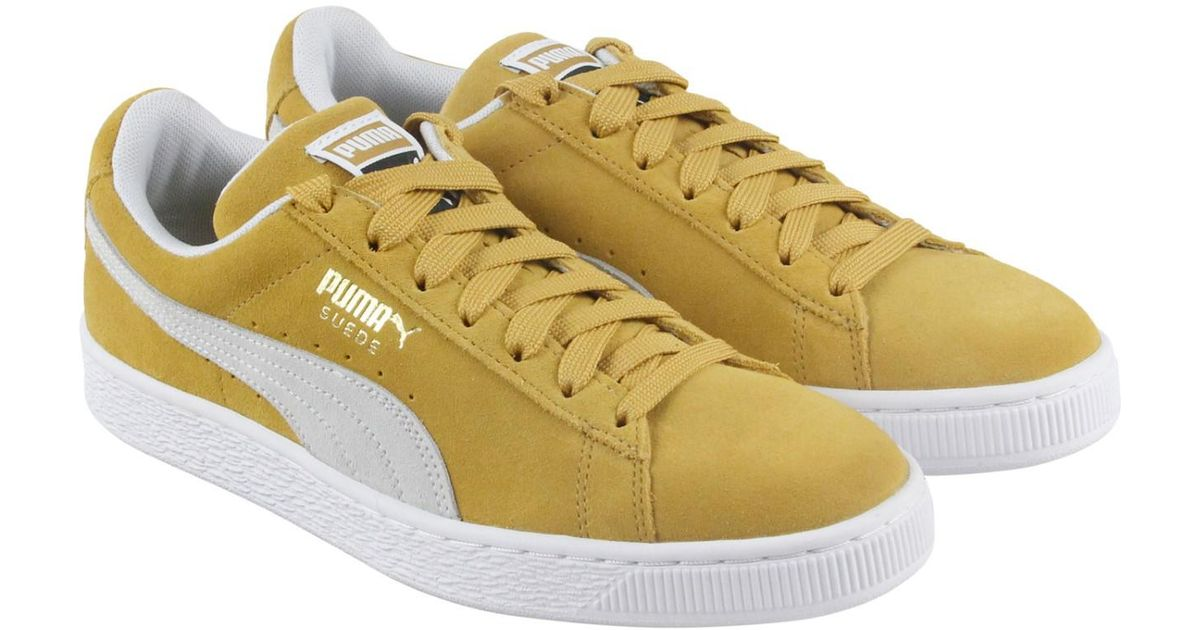 Lyst - PUMA Classic Honey Mustard White Lace Up Sneakers in Yellow for Men 82b8d242a