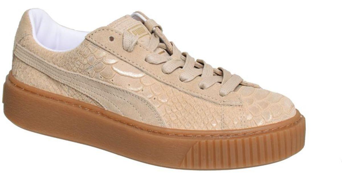 76b32f2b81cb Basket Platform Exotic Skin natural vachetta gold Puma Wiki Verkauf Online  Bilder Günstiger Preis Neue