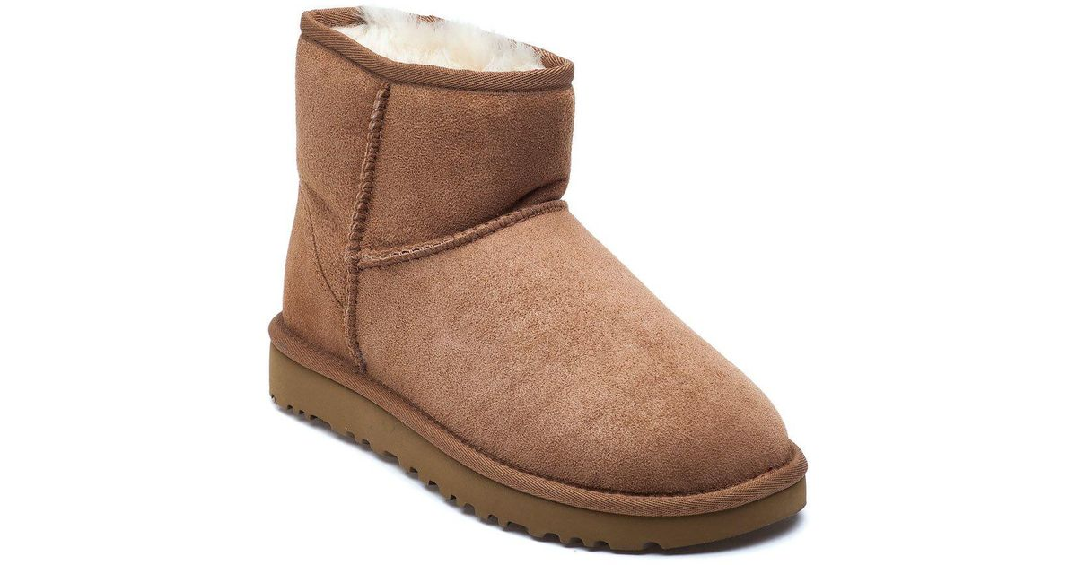 ugg mini ii chestnut
