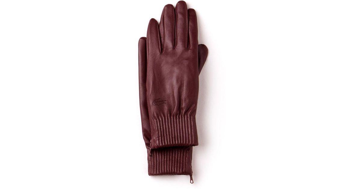 8e0b2df8b1e108 Lyst - Lacoste Zippered Premium Leather Gloves