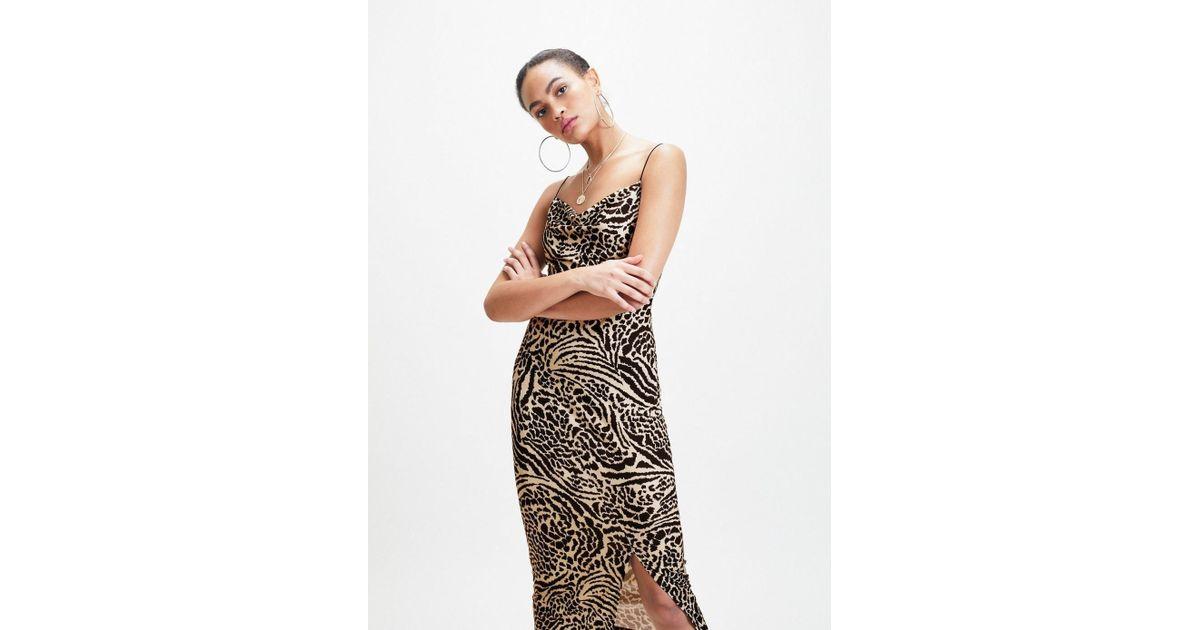 1504541483 Lyst - Miss Selfridge Multi Colour Animal Print Jersey Slip Dress in Black
