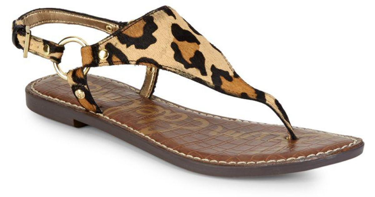 32d191ff3afb Lyst - Sam Edelman Greta Leopard Thong Sandals in Brown