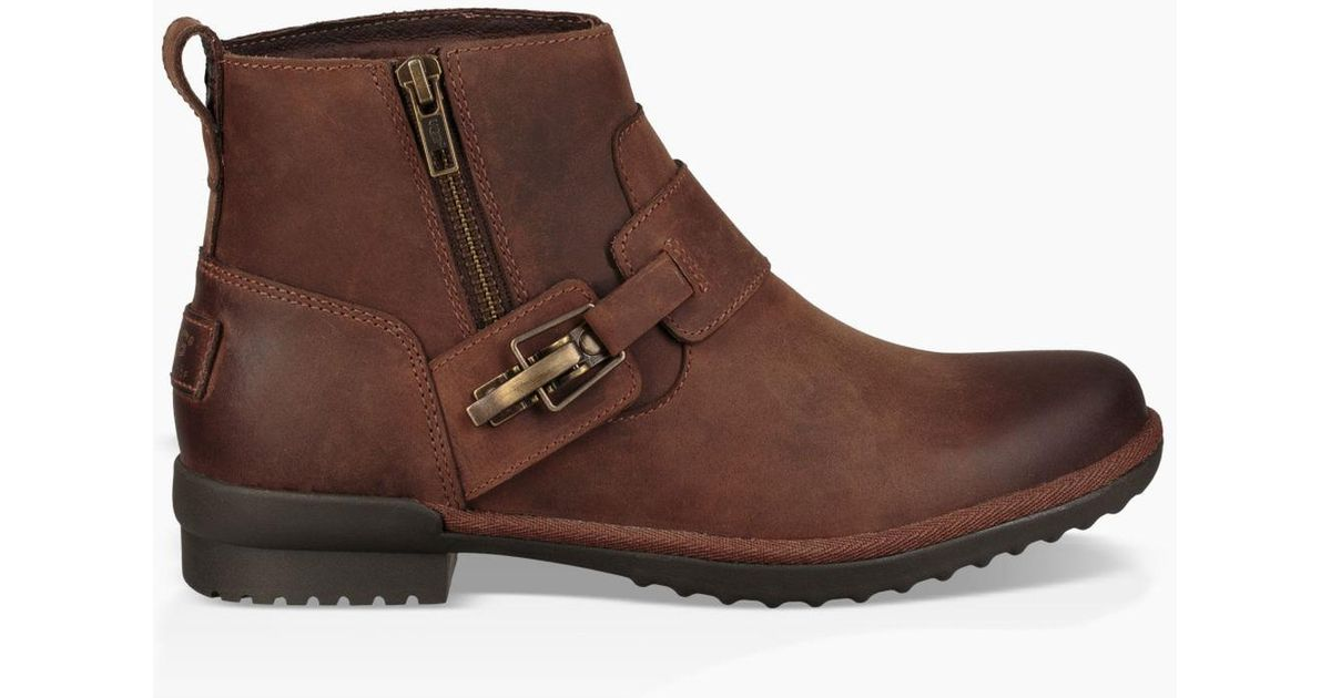Bottine Cheyne Cheyne pour femmes Lyst Bottine Ugg Lyst en marron bf40e0c - vendingmatic.info