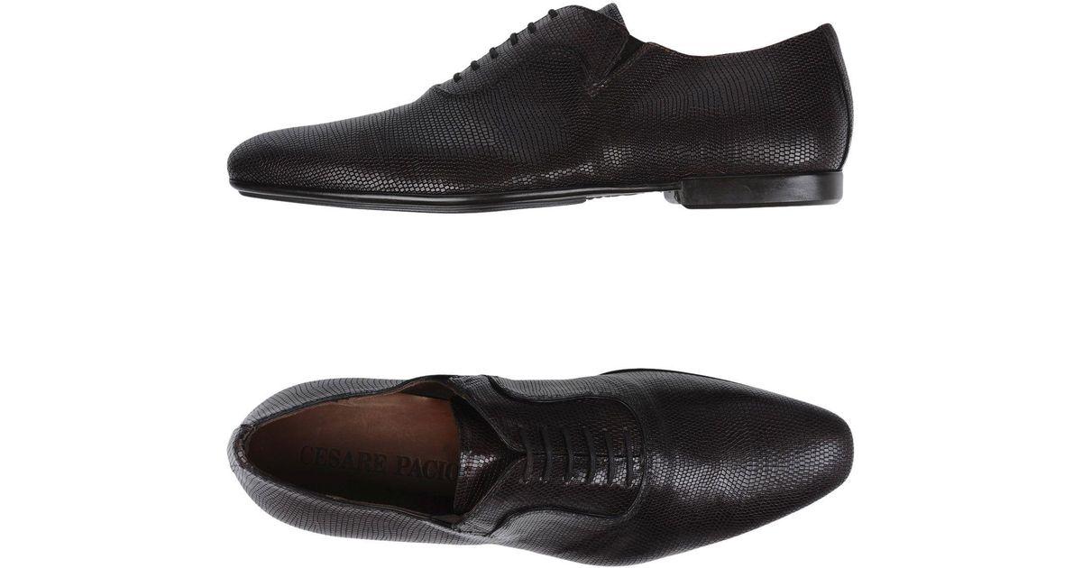 Paciotti Chaussure À Lacets Cesare-up YZYAtno