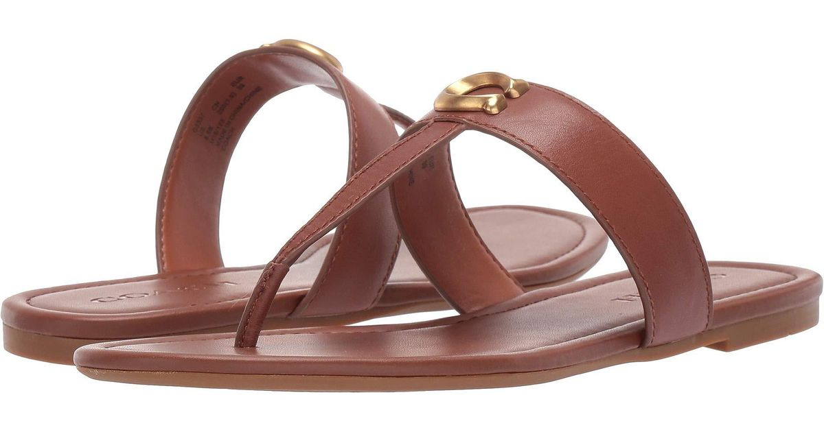 079542ca85e Lyst - COACH Jessie Thong Sandal With Signature Buckle (tan dark Brown)  Women s Sandals