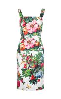 Dolce & Gabbana Floral Print Sleeveless Dress - Lyst