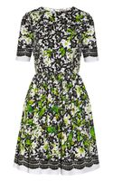 Oscar de la Renta Printed Stretch Cotton Poplin Dress