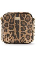 Dolce & Gabbana Leopard Print Mini Shoulder Bag - Lyst