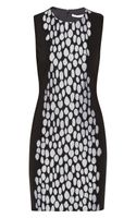 Diane Von Furstenberg Tilda Lace Appliqued Ponte Mini Dress
