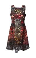 Peter Pilotto Eclipse Lace Overlay Dress - Lyst